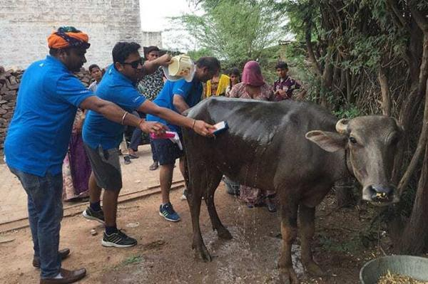 jodhpur-city-race-1.jpg